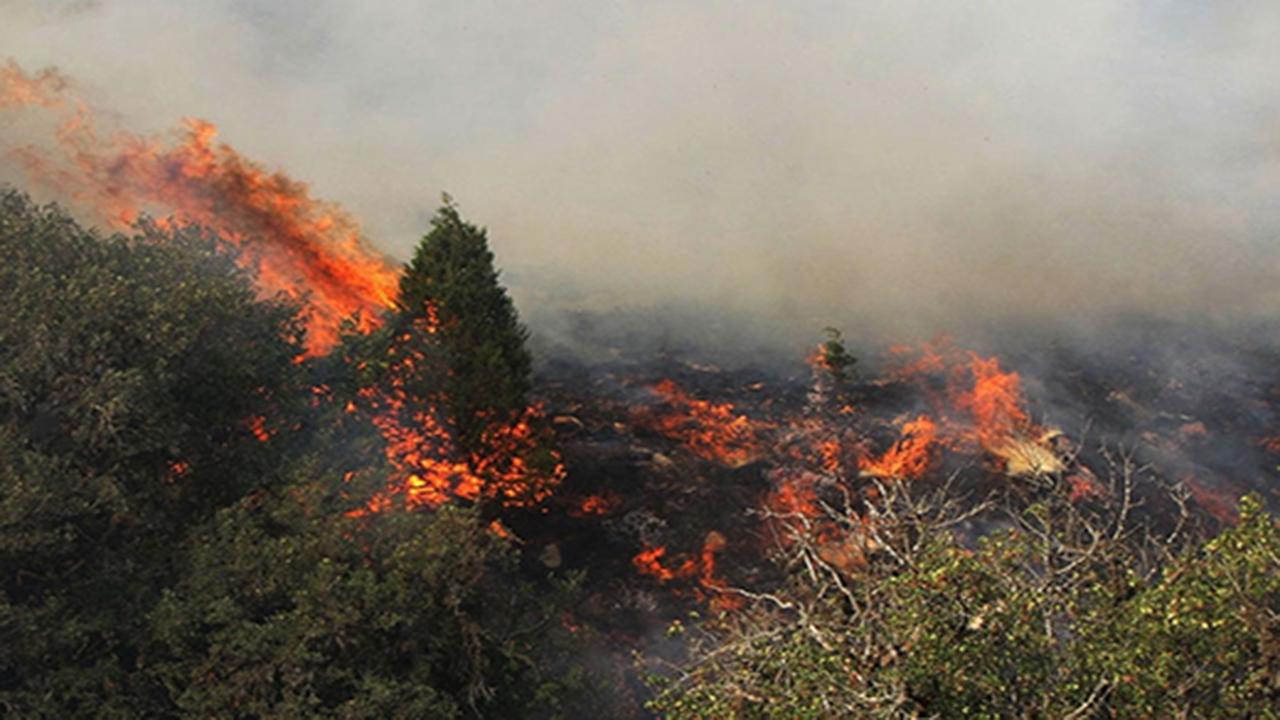 آتش سوزی در مراتع طبیعی فیروزآباد/آتش کنترل شده است + تصاویر